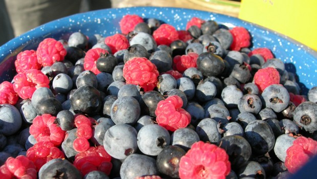 Eat well, eating habits help stress berries